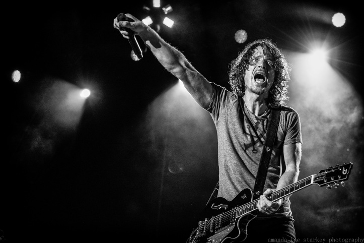soundgarden (1 of 1)-5.jpg