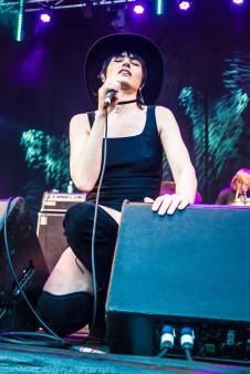 the preatures (8 of 37)