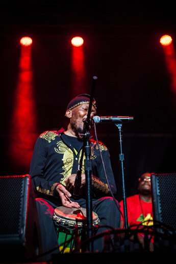 jimmy cliff (12 of 15)